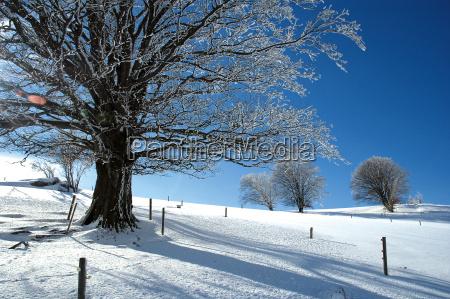 winter, landscape, 22 - 694117