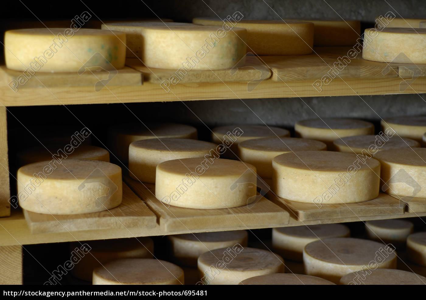cheese, 5 - 695481