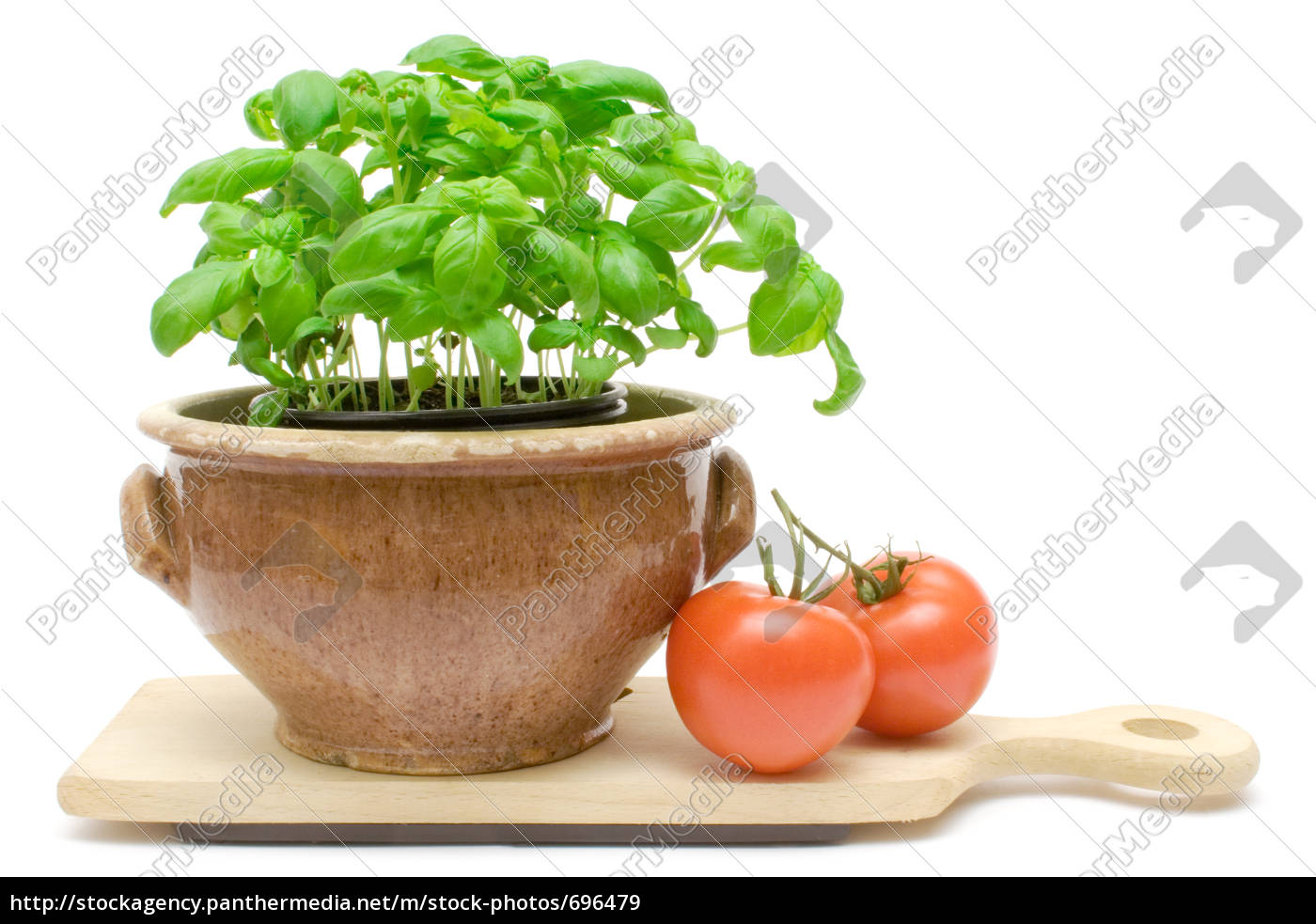 basil, and, tomatoes - 696479