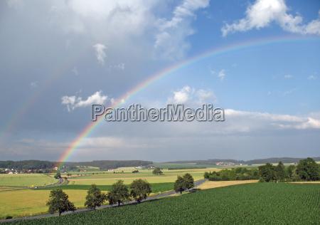 rainbow - 698693