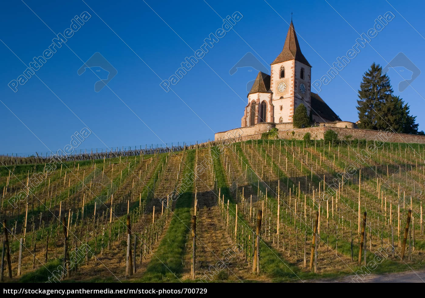 fortified, church, over, vineyards - 700729