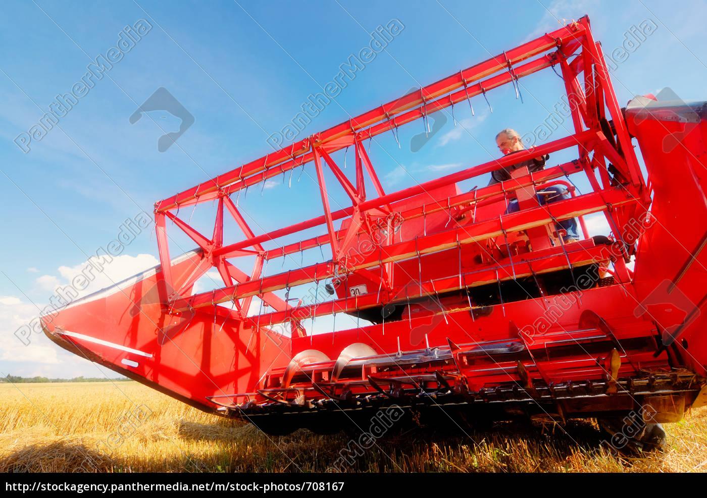 harvest, time, 10 - 708167