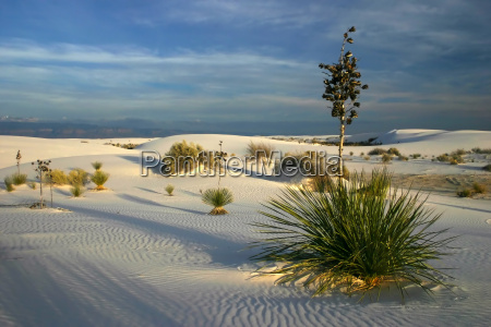 sunset, at, white, sands - 711870