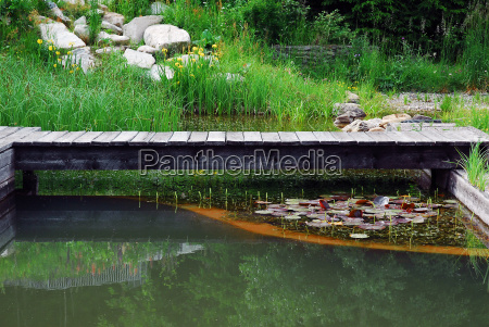 pond - 715048