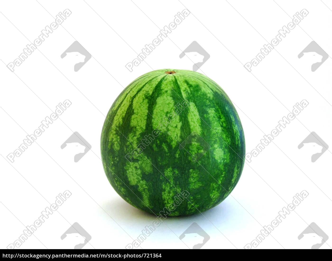 watermelon - 721364