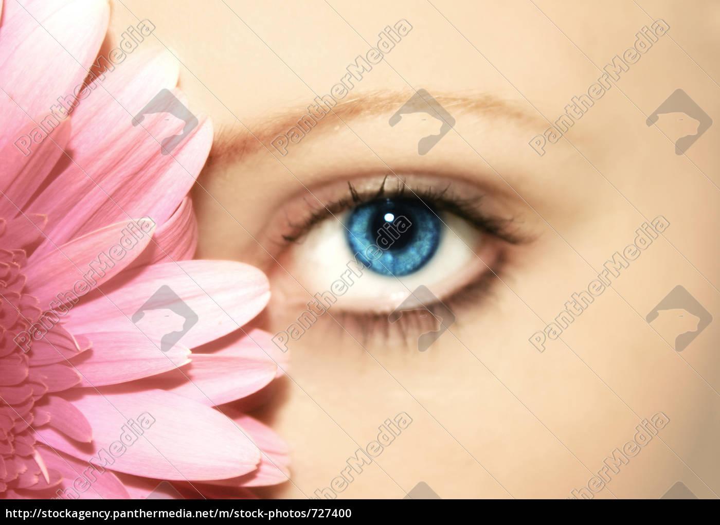 beauty, -, flower, -, eye - 727400