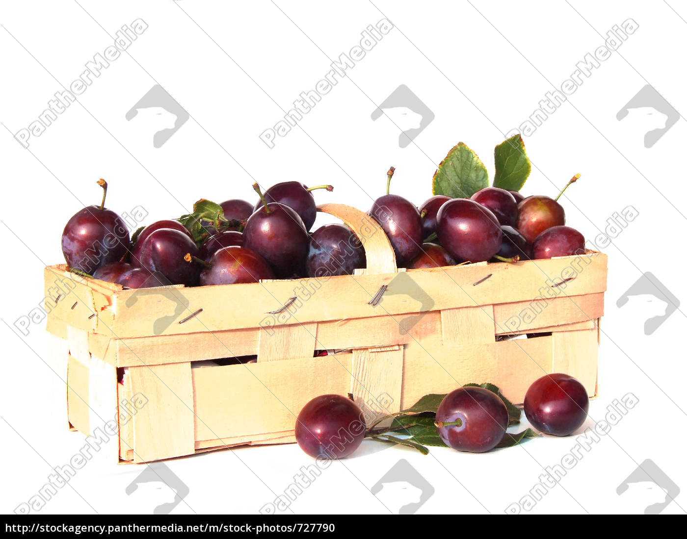 plum, basket - 727790