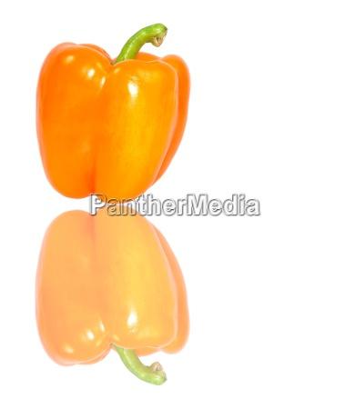paprika - 730382