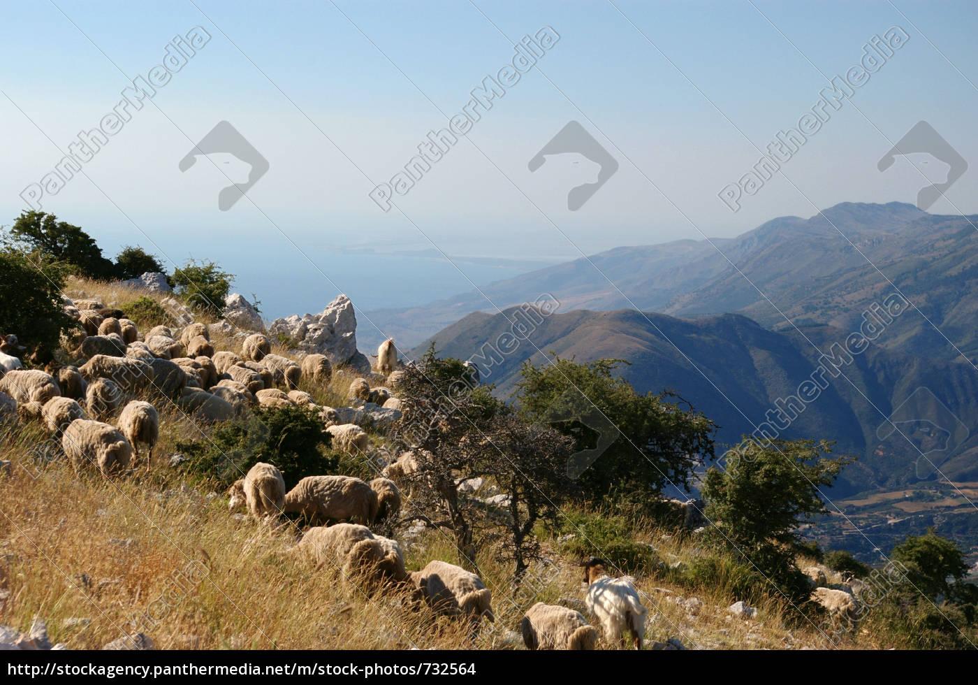cika, mountains - 732564