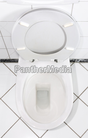 white, toilet, bowl - 733336