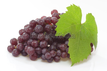 table, grapes - 737212