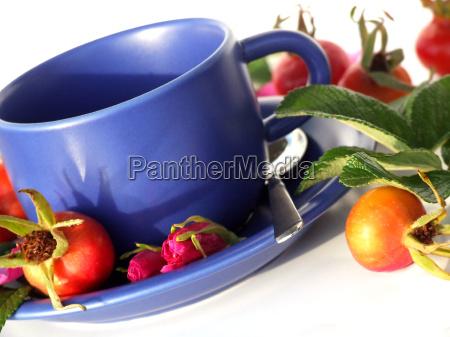 teacup - 740182
