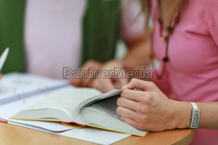learn, details - 742728