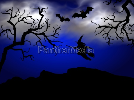 halloween, witch - 747004