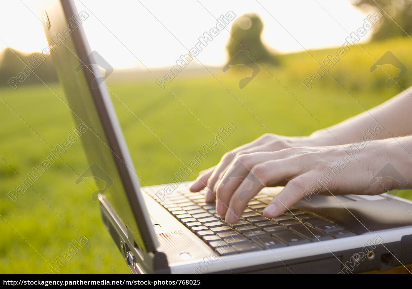 with, laptop, in, the, garden - 768025