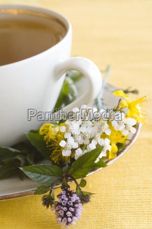 herbal, tea - 772321