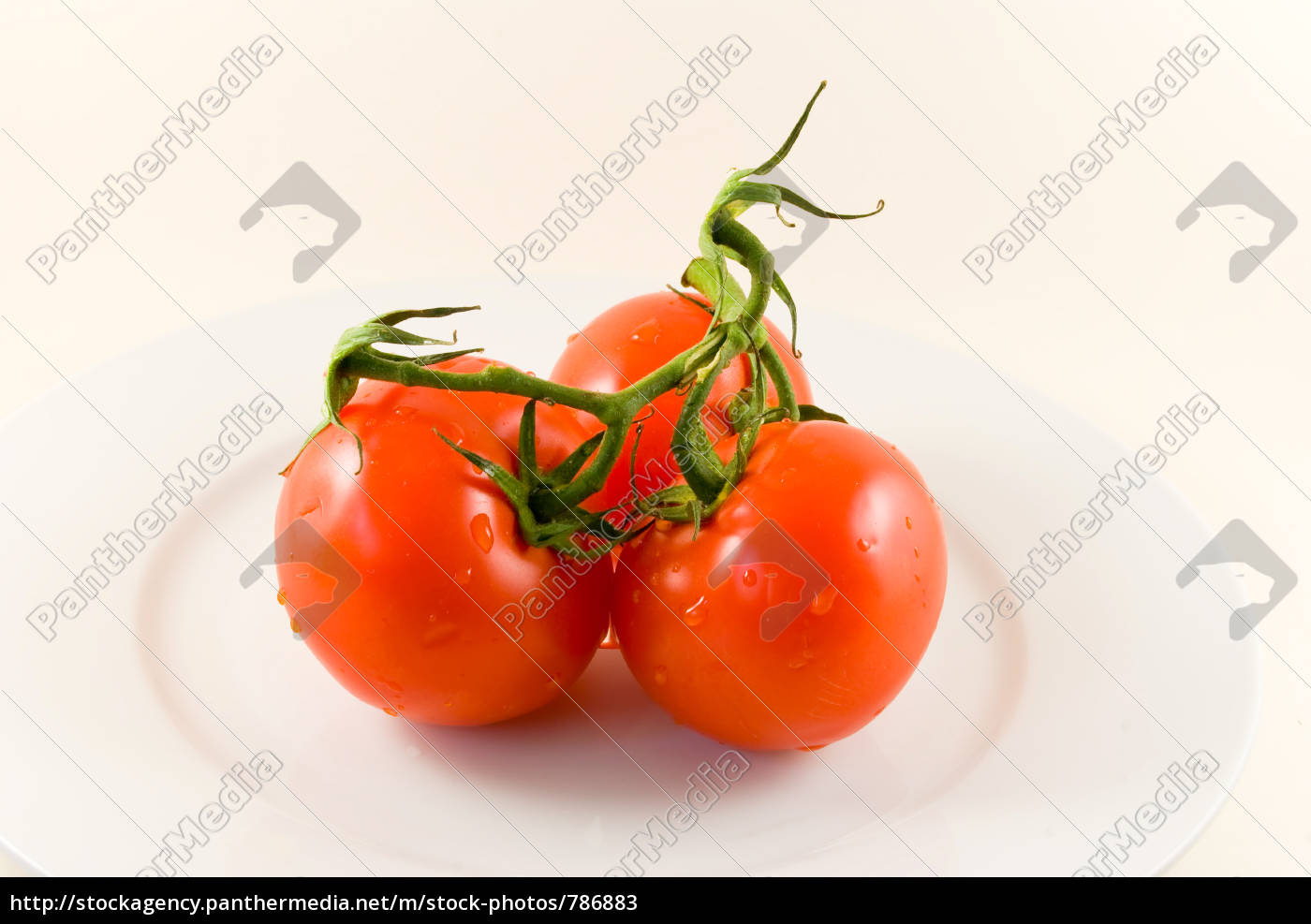 tomatoes, on, plate-isolated - 786883