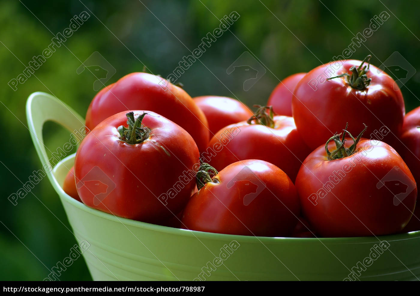 close, up, on, tomatoes, in, basket - 798987