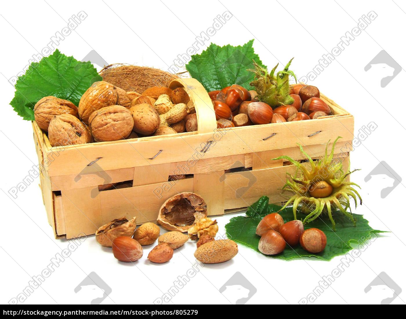 nuts - 805279