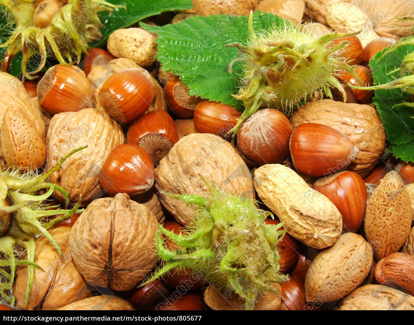 nuts - 805677