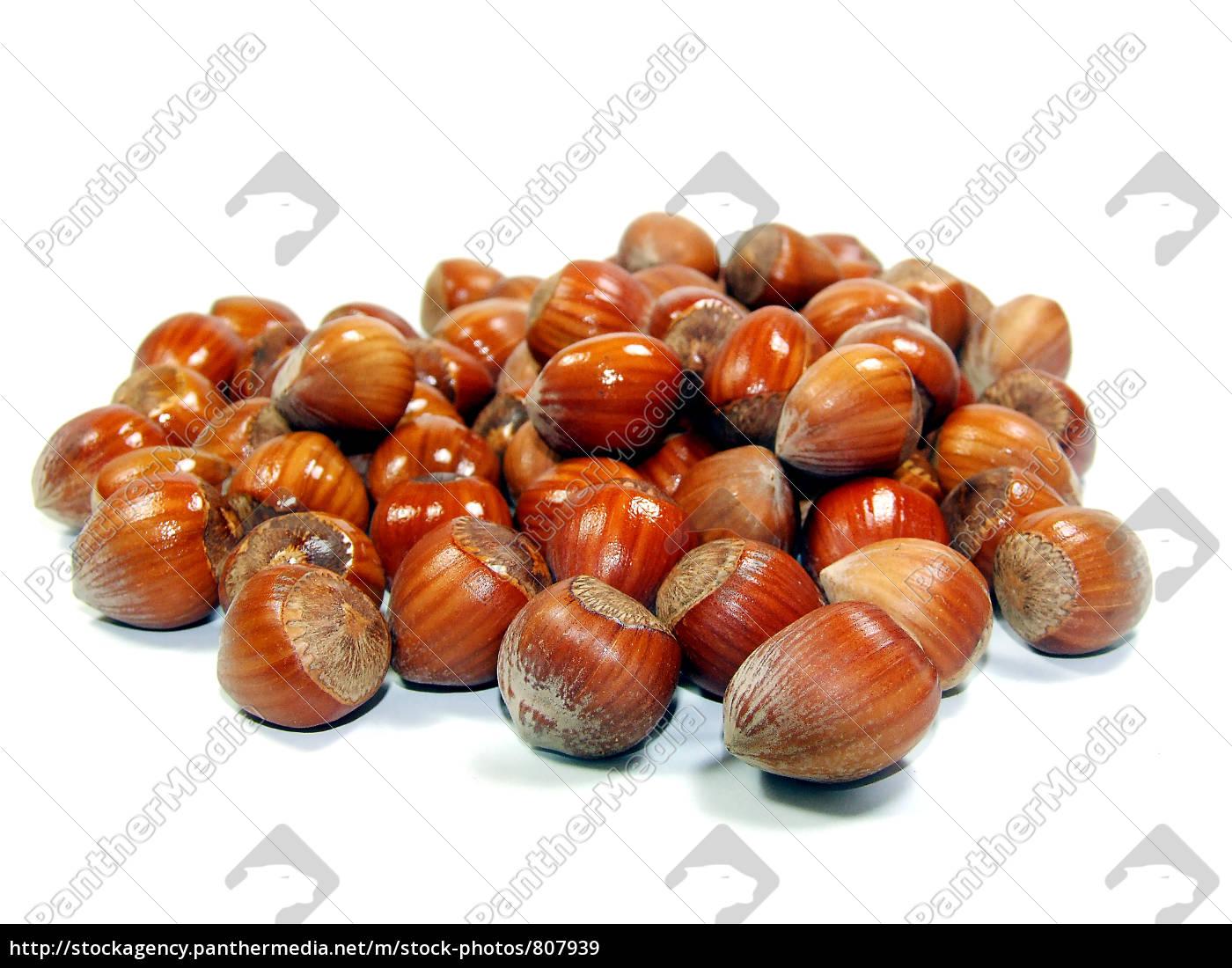 hazelnuts - 807939