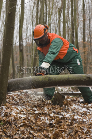 make, wood - 813501
