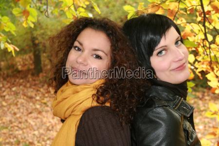 friends, of, fall - 908739