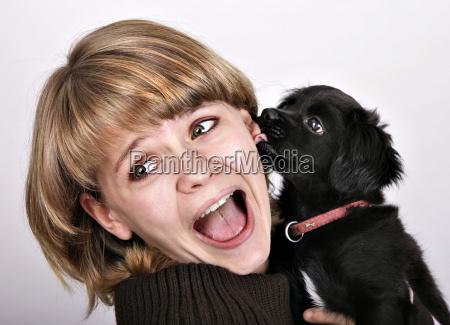 animal love 2