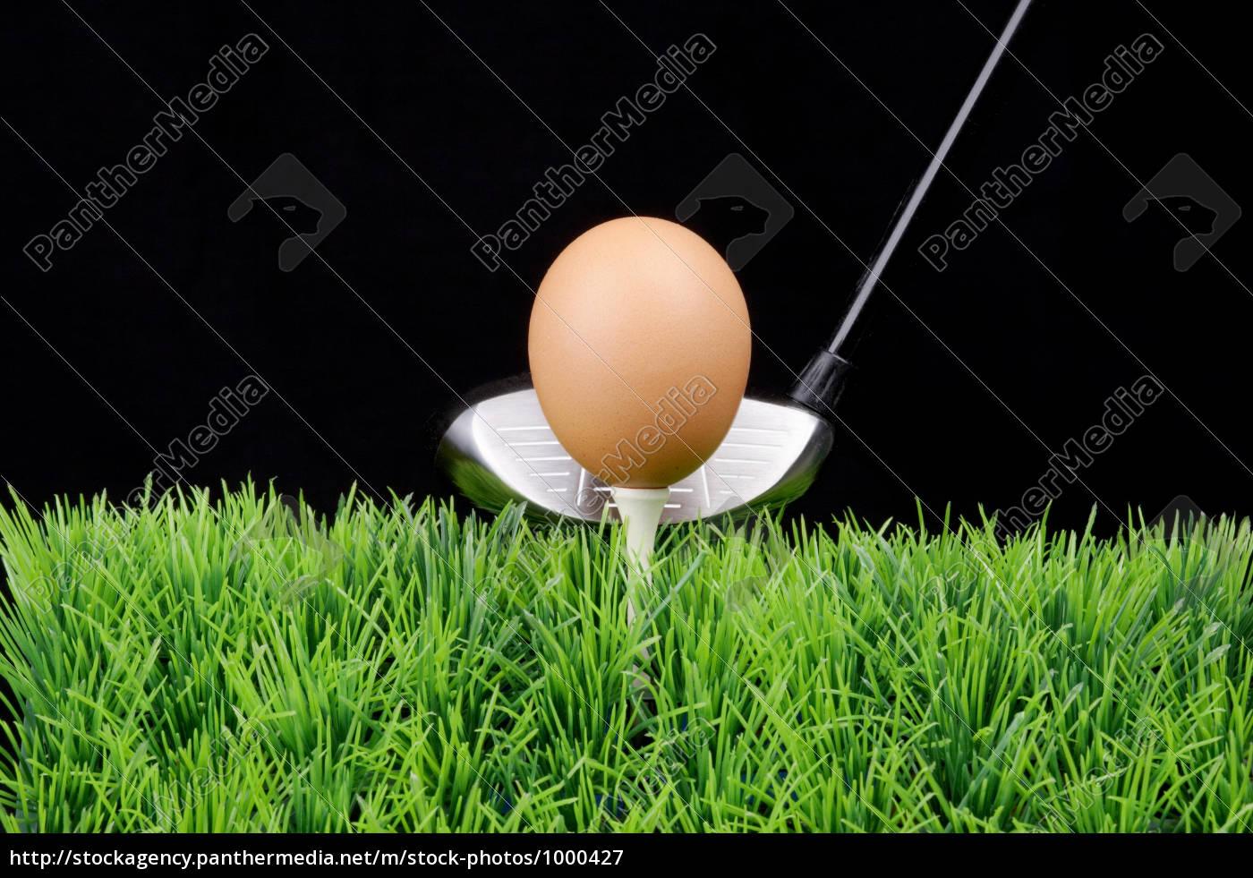 egg, on, golf, tee - 1000427