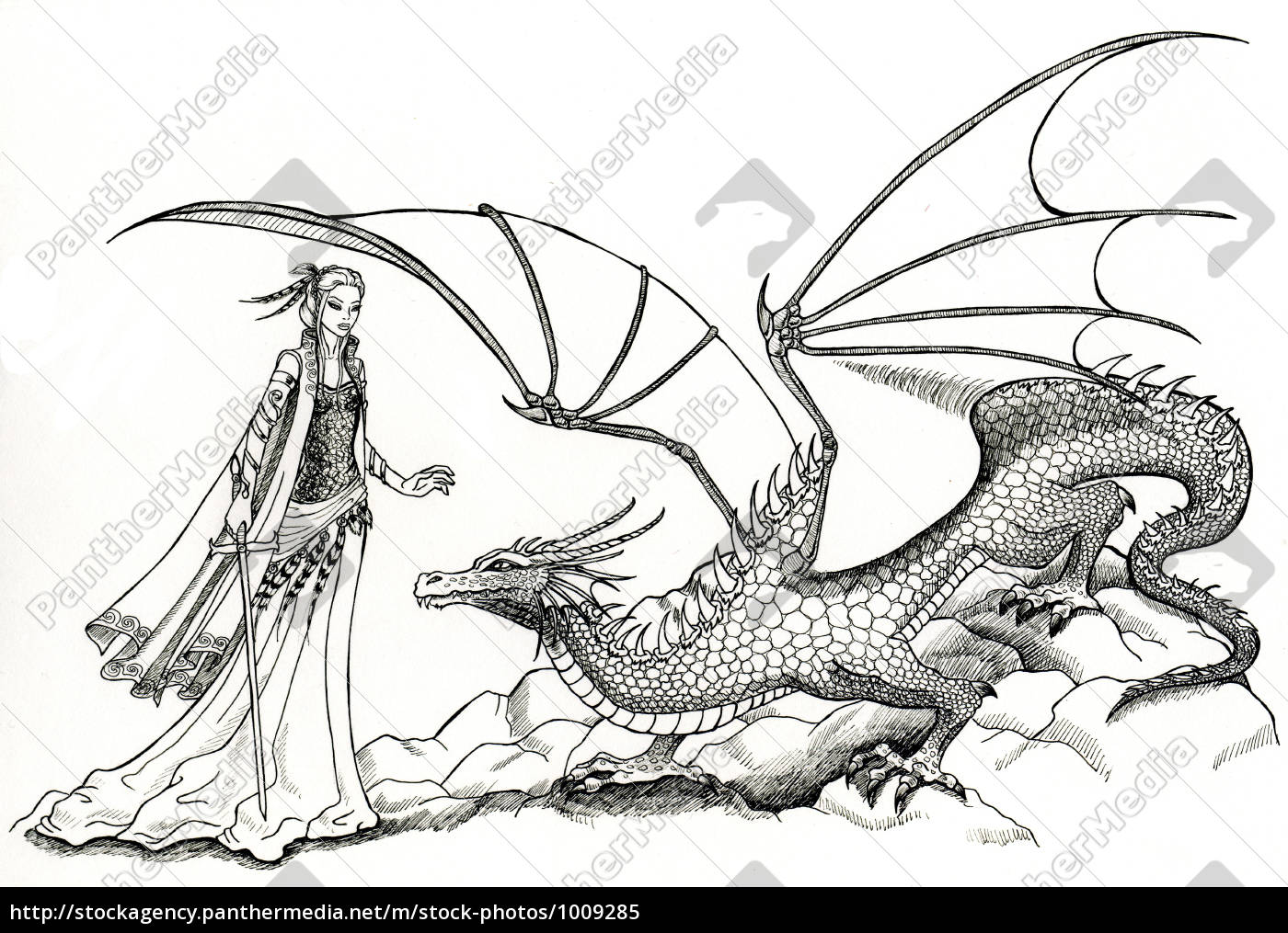elf, with, sword, and, dragon - 1009285