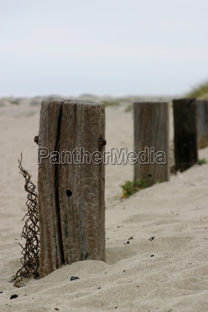 old fence poles