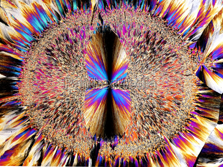 crystals in polarized light
