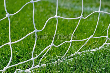 soccer net base in the grass