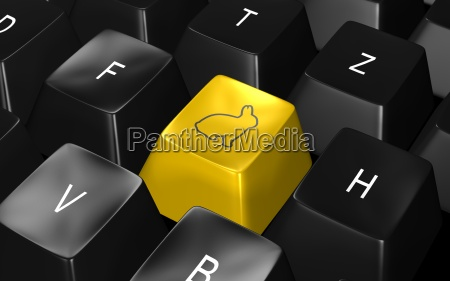 keyboard, hase - 1123427