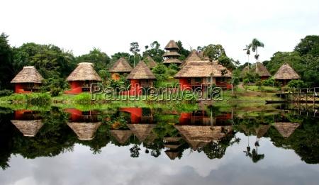duplicate jungle idyll