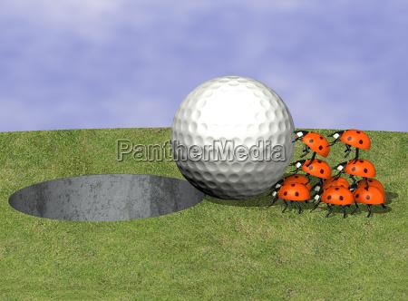 golf ball with ladybugs