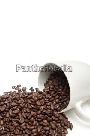 spill, the, beans - 1186875