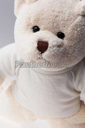 white label teddy