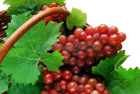 fresh, grapes, in, basket, in, detail - 1251877