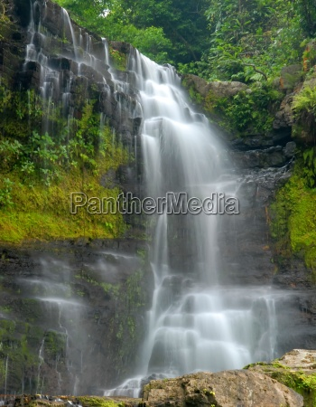 waterfall, through, dense, forest - 1265429