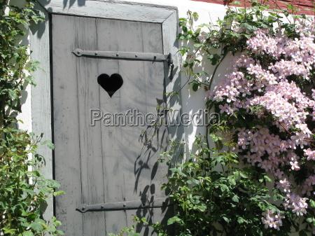 puerta clematide holztuer bewachsen berankt