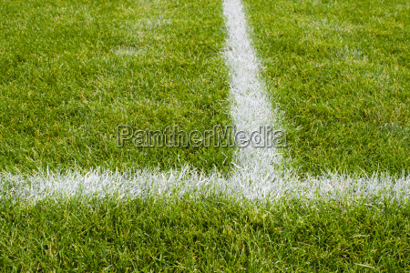 soccer, field, intersecting, lines - 1295103
