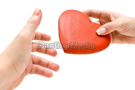 schenk you my heart