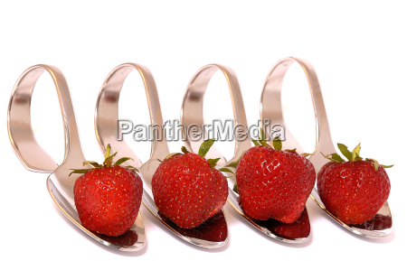 strawberry quartet 2