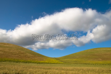 pastures - 1306029
