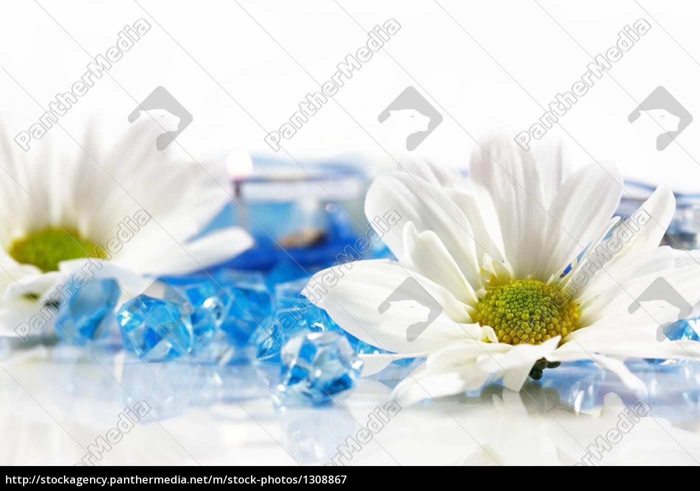 wellness, and, aromatherapy - 1308867