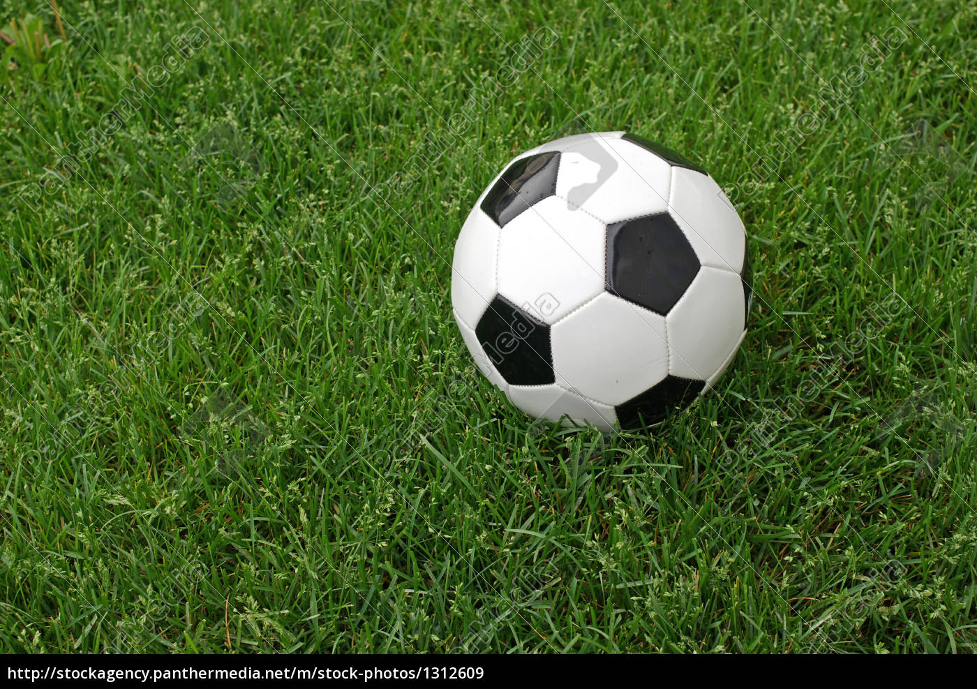 soccer, ball, in, the, grass - 1312609
