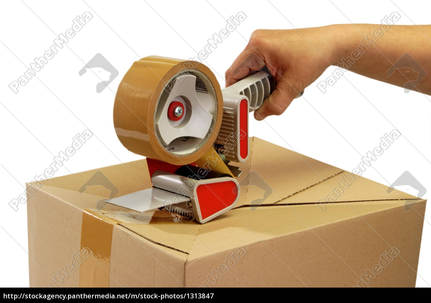 package - 1313847