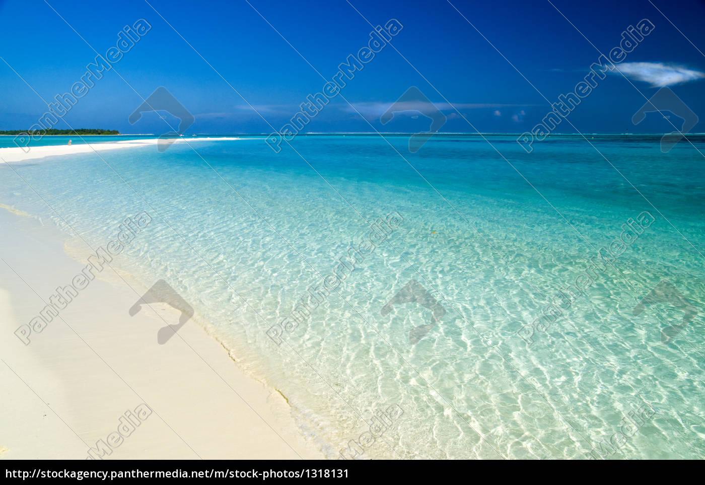beach, tongue - 1318131