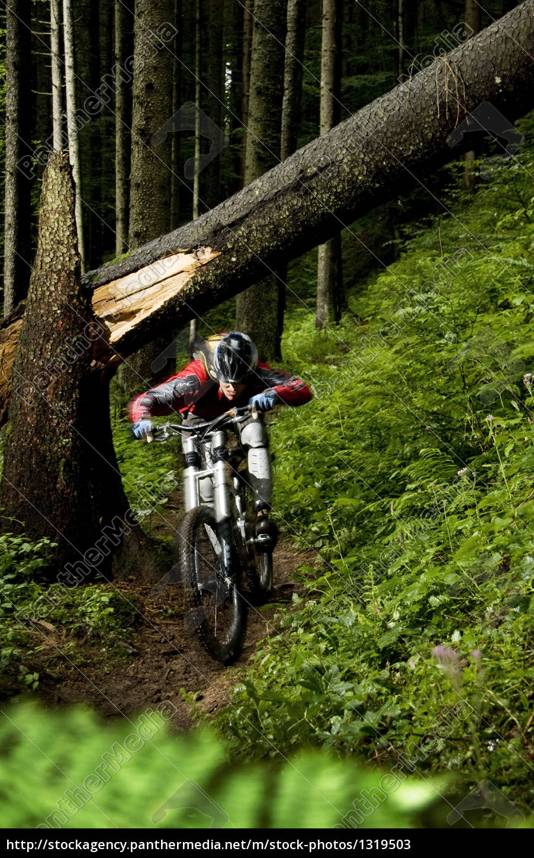 mountain, biking, in, the, allgäu - 1319503